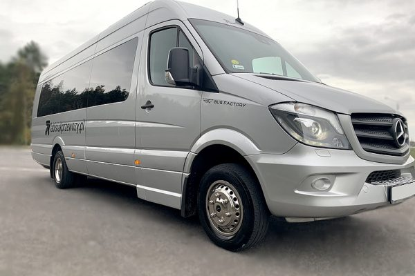 Minibus Mercedes Sprinter 519, EURO 6, year of production 2019